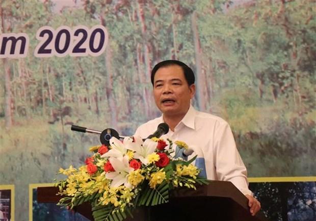 阮春强部长:须确定各单位在森林保护与发展工作中的责任 hinh anh 1