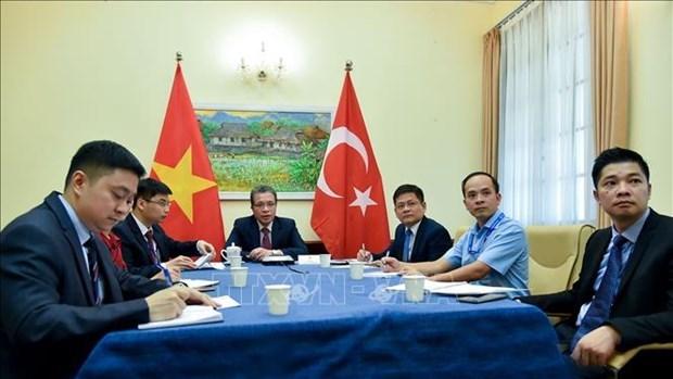 越南与土耳其外交部领导就两国新冠肺炎疫情下促进关系的措施展开讨论 hinh anh 1