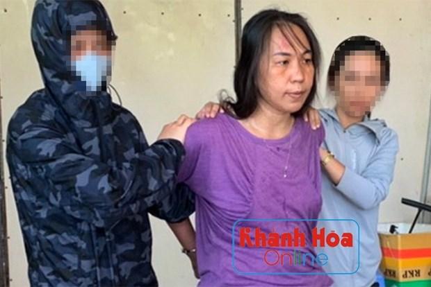 河内公安对涉嫌煽动反对国家罪的两名被告人进行起诉 hinh anh 1
