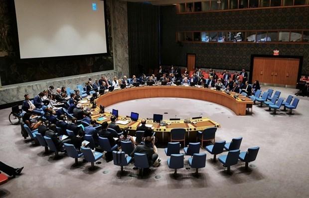 联合国安理会通过由越南起草关于核查国际法院未决案件解决机制活动的决议 hinh anh 1