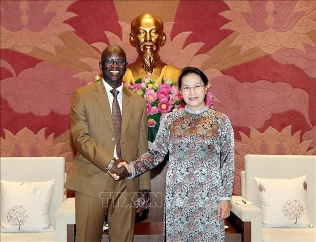 国会主席阮氏金银会见世界银行驻越代表处首席代表奥斯曼·迪奥 hinh anh 1