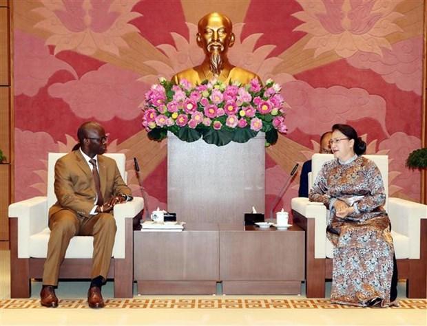 国会主席阮氏金银会见世界银行驻越代表处首席代表奥斯曼·迪奥 hinh anh 2