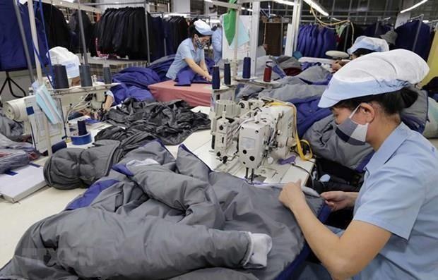 2020年上半年越南GDP增长率达1.81% hinh anh 2