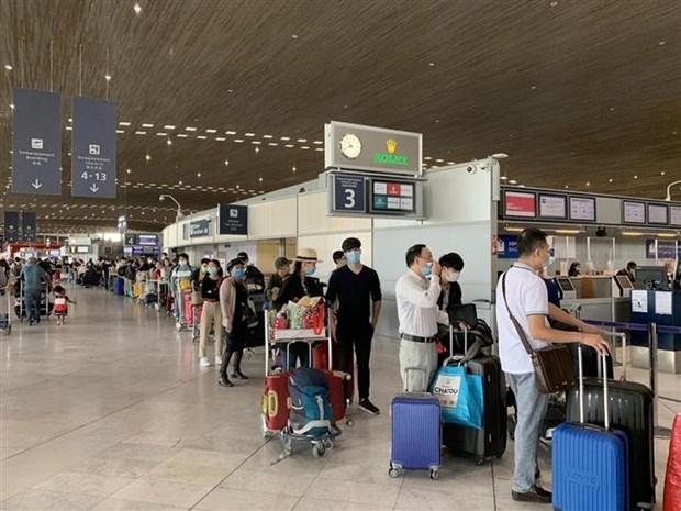 将280多名在欧洲越南公民接回国 hinh anh 1