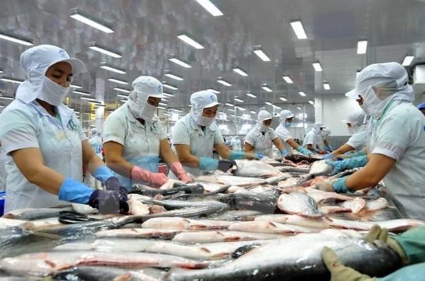 2020年上半年越南水产品出口额同比下降了10% hinh anh 1