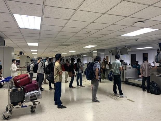 越南将在南亚若干国家的越南公民接回国 hinh anh 1