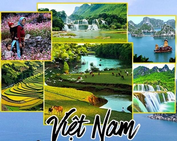 越南旅游:越南多措并举促进国内旅游业发展 hinh anh 1
