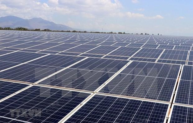 宁顺省Solar Farm太阳能发电厂正式竣工投运 hinh anh 1