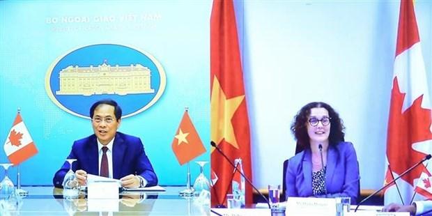 越南与加拿大举行第二次副外长级政治磋商 hinh anh 1