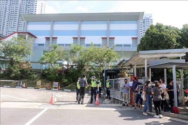 新加坡举行新一届国会选举 265万名选民投票 hinh anh 1