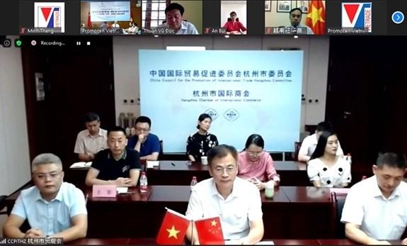 越南与浙江省企业实现优势互补 力促双边经贸往来 hinh anh 2