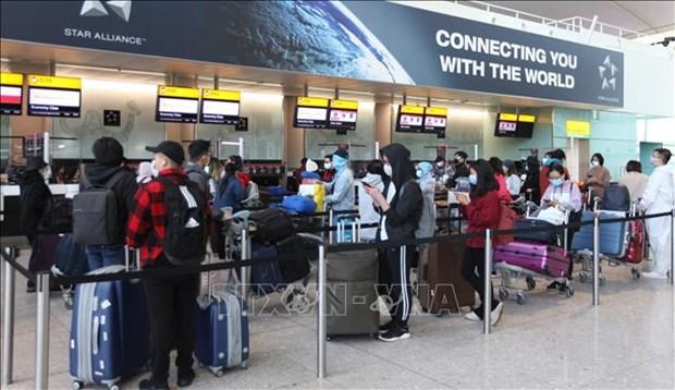 越南将在英国的340名本国公民接回国 hinh anh 1