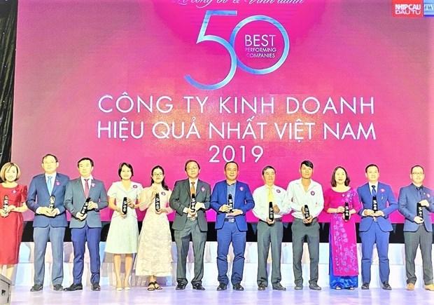 越南天然气总公司跻身2019年越南最佳运营绩效公司50强 hinh anh 1