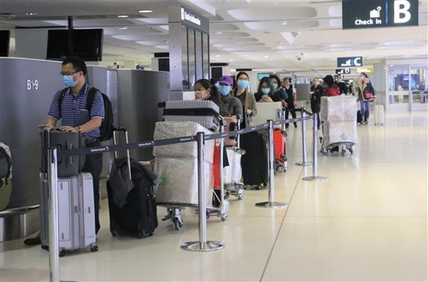 新冠肺炎疫情:350名在澳越南公民安全回国 hinh anh 1