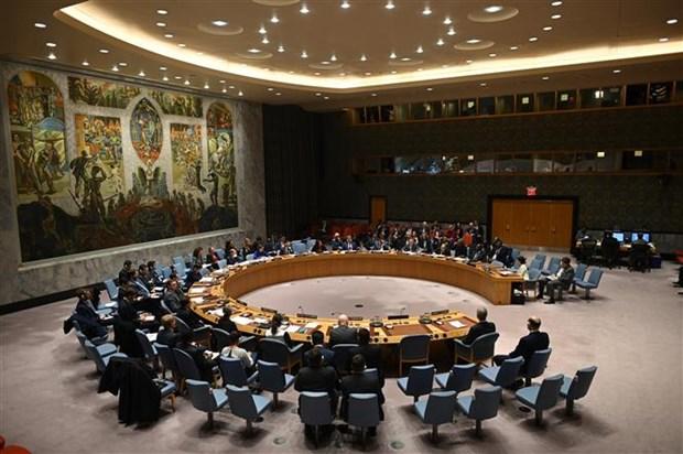 联合国安理会在4个月后首次召开现场会议 hinh anh 1