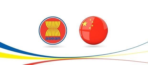 2020年上半年东盟成为中国的最大贸易伙伴 hinh anh 1