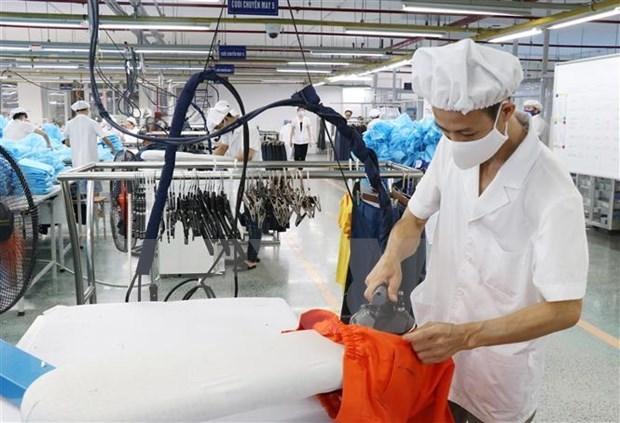 专家:越南有望实现疫情爆发之前的经济增长 hinh anh 1
