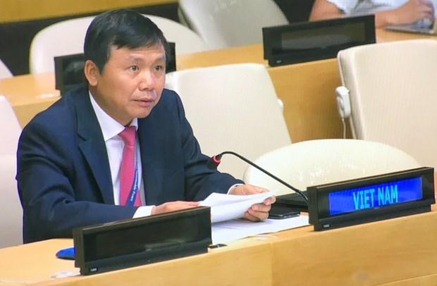 越南重申支持核查哥伦比亚和平协议执行情况 hinh anh 1