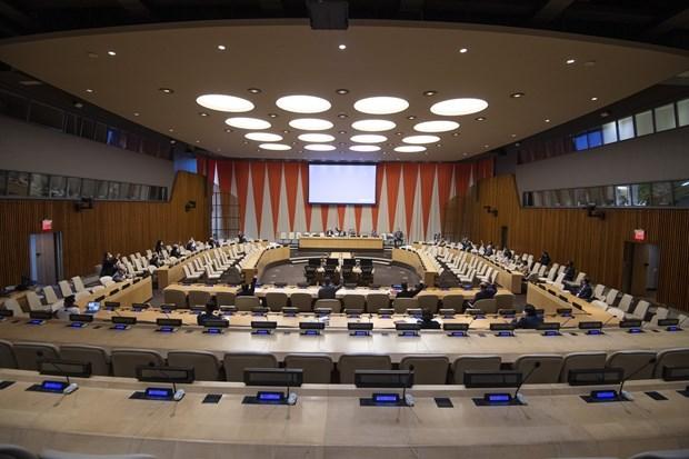 越南重申支持核查哥伦比亚和平协议执行情况 hinh anh 2
