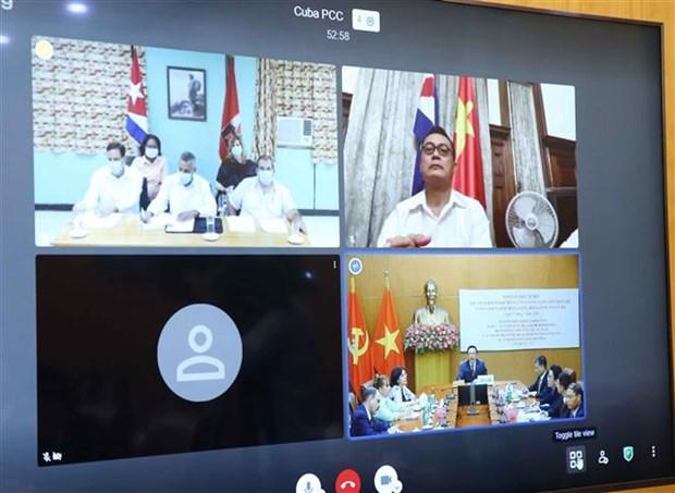 越共中央对外部部长同古巴共产党中央对外部代部长举行视频会谈 hinh anh 2