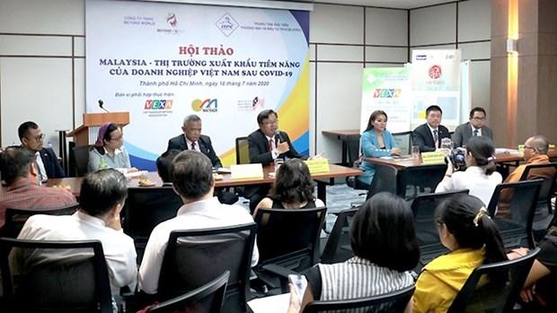 马来西亚——越南新冠肺炎疫情后的潜在出口市场 hinh anh 1
