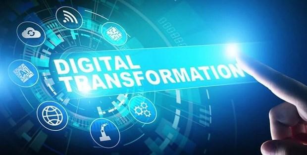 加速数字化转型——越南2020年上半年的亮点 hinh anh 1