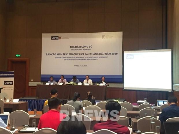 VEPR:2020年越南经济增长的两种情景 hinh anh 1