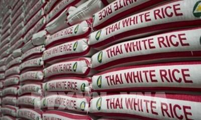 2020年泰国的大米出口量预测降至20年来最低 hinh anh 1