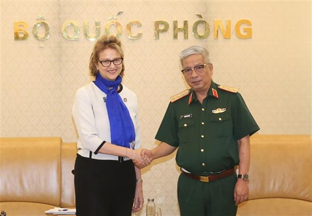 """国防部副部长阮志咏:越南为""""妇女与联合国维和行动""""国际会议做好准备 hinh anh 2"""