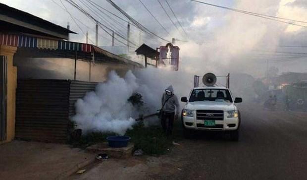 奇昆古尼亚病毒感染的传染病疫情在柬埔寨爆发 hinh anh 1