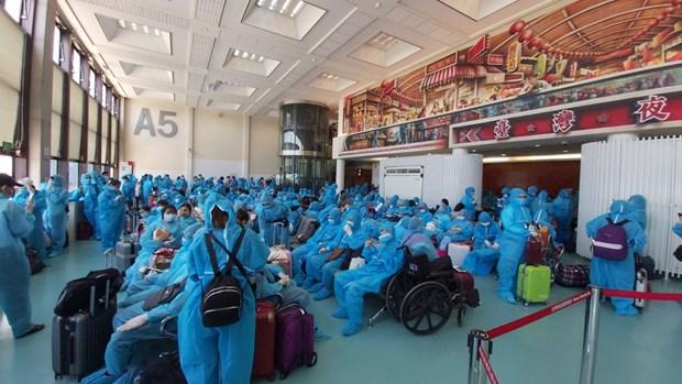 新冠肺炎疫情:把在中国台湾的230名越南公民接回国 hinh anh 1