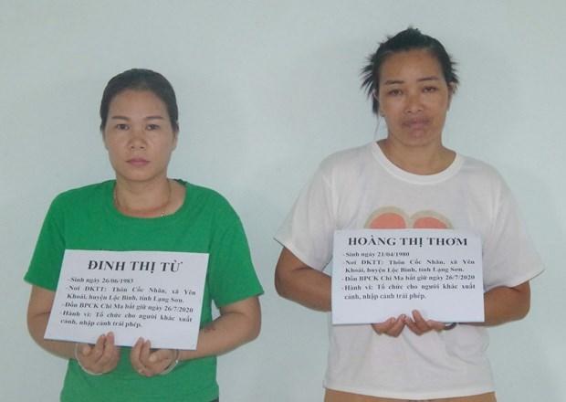 谅山省:组织外国人非法入境的2名犯罪嫌疑人被抓 hinh anh 1