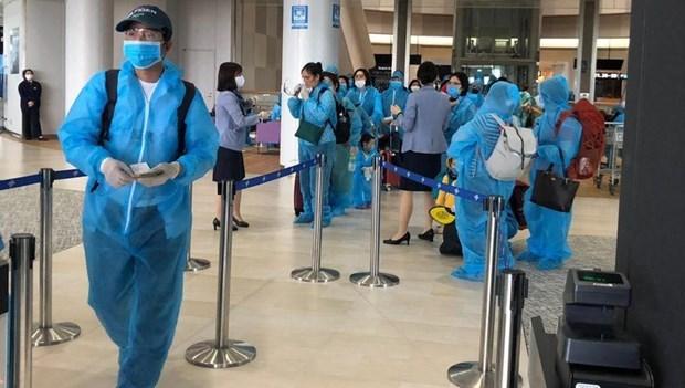 新冠肺炎疫情:将在日本滞留的340名越南公民接回国 hinh anh 1