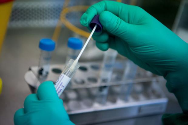 河内提出拥有PCR检测技术的医院协助进行新冠检测 hinh anh 2