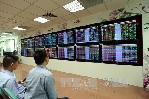 2020年8月第一个交易日越南股市出现令人印象深刻的反弹 hinh anh 1