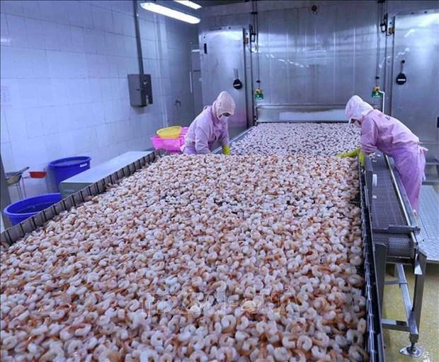 《越南与欧盟自由贸易协定》助力欧洲经济复苏和创造就业机会 hinh anh 1