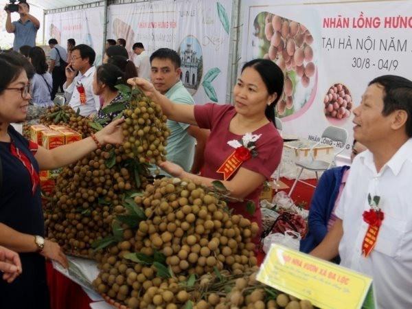 兴安省多举措促进农产品销售 hinh anh 1