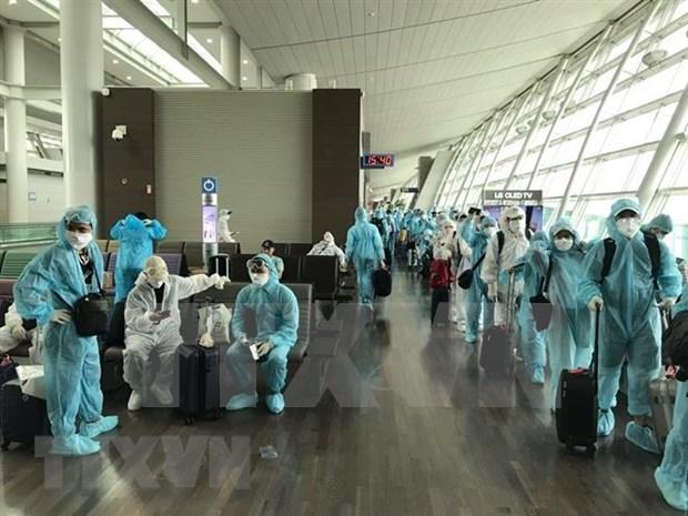 300名越南公民从加拿大和韩国安全回国 hinh anh 1