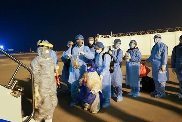 新冠肺炎疫情:将在日本滞留的220多名公民接回国 hinh anh 1