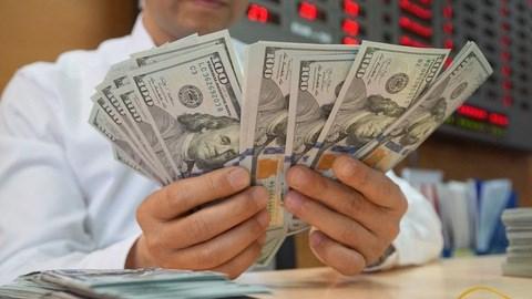 8月7日越盾对美元汇率中间价上调3越盾 hinh anh 1