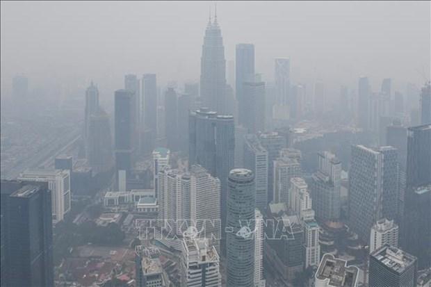 东盟努力应对跨境烟霾污染问题 hinh anh 1