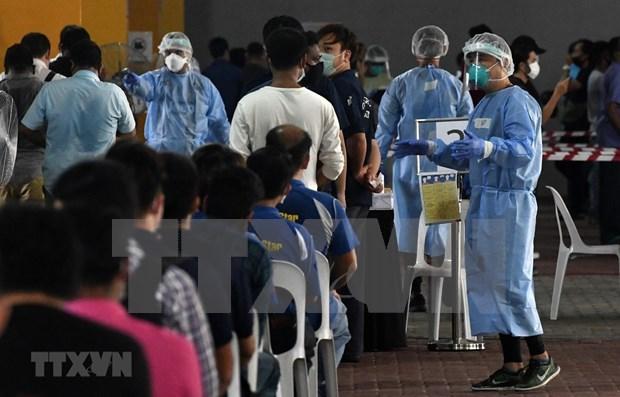 26万余名外籍劳工即将返回新加坡重返工作岗位 hinh anh 1