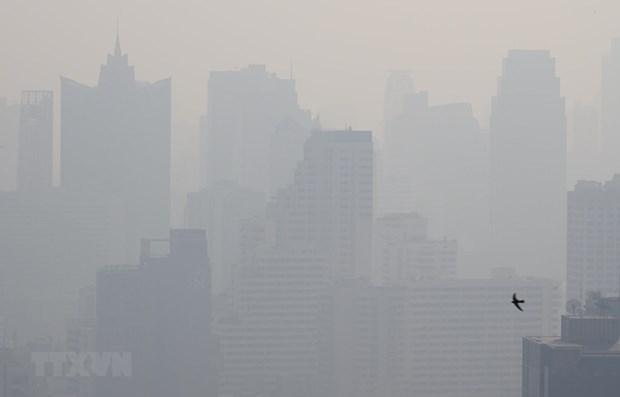 东盟努力应对跨境烟霾污染问题 hinh anh 2