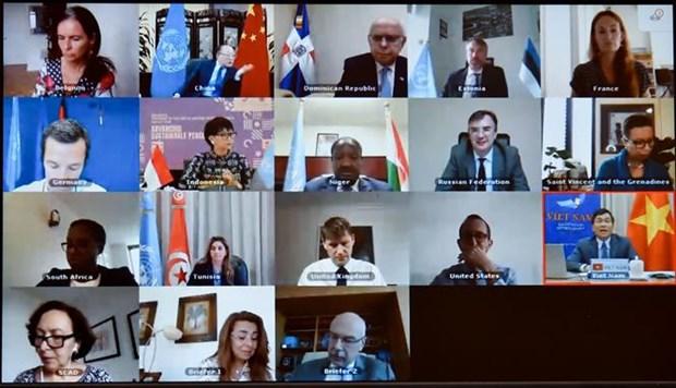 越南与联合国安理会:越南愿同有关各方合作有效打击恐怖主义和有组织犯罪 hinh anh 1
