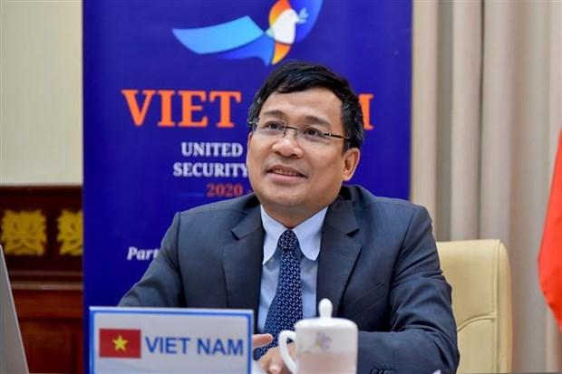越南与联合国安理会:越南愿同有关各方合作有效打击恐怖主义和有组织犯罪 hinh anh 2