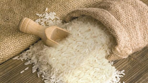 越南向非洲市场的大米出口继续呈大幅增长趋势 hinh anh 2