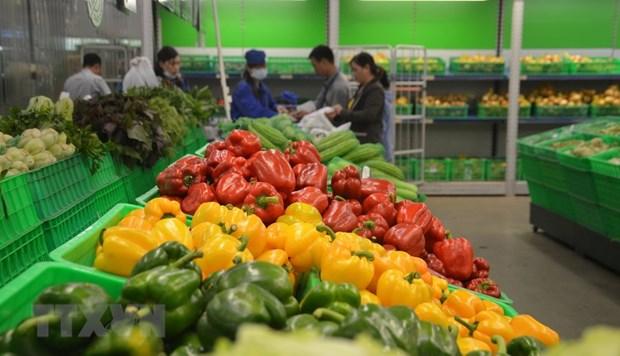 今年前7月越南蔬菜水果出口额达近20亿美元 hinh anh 1