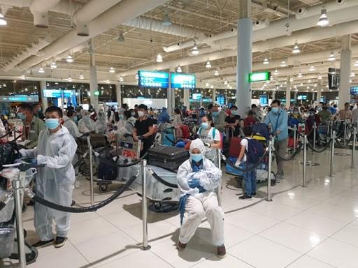 新冠肺炎疫情:在阿联酋的260名越南公民安全回国 hinh anh 1