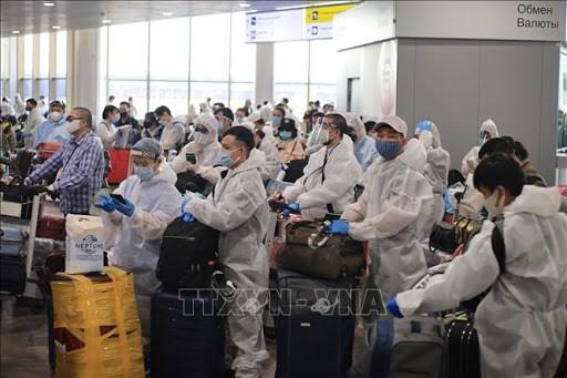 新冠肺炎疫情:在俄罗斯的逾340名越南公民安全回国 hinh anh 1