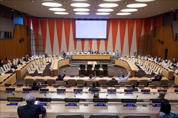 越南呼吁国际社会加强为黎巴嫩提供人道主义援助 hinh anh 1